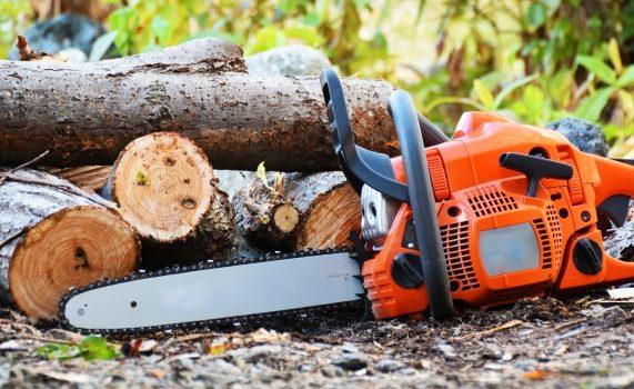 自分で伐採する方法