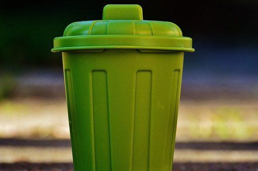 ゴミ袋に入る小枝や葉は可燃ごみとして出せる!
