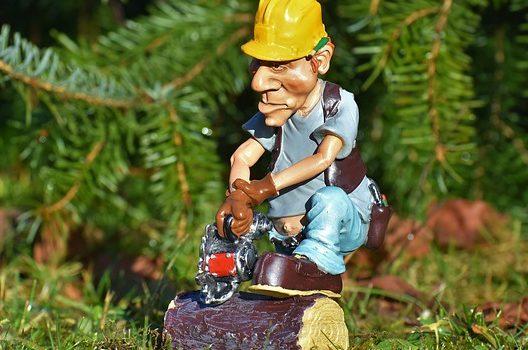 立木伐採は自分でできる?プロの手順を知ろう|依頼するならいくら?