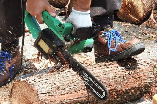 伐採業者を選ぶコツ