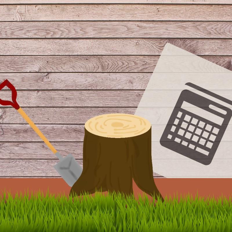 樹木の伐採をする際は、抜根も一緒に依頼しましょう!