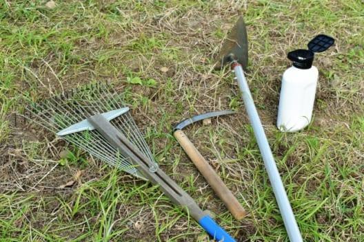 方法1.除草剤で枯らす